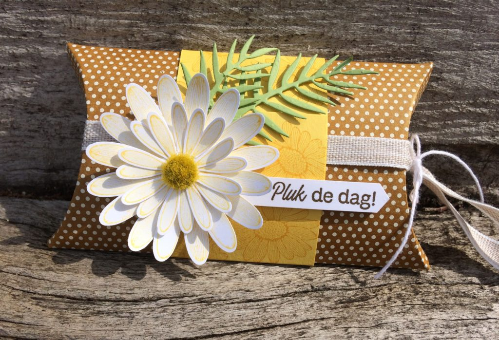 Stampin'Up! Daisy Lane