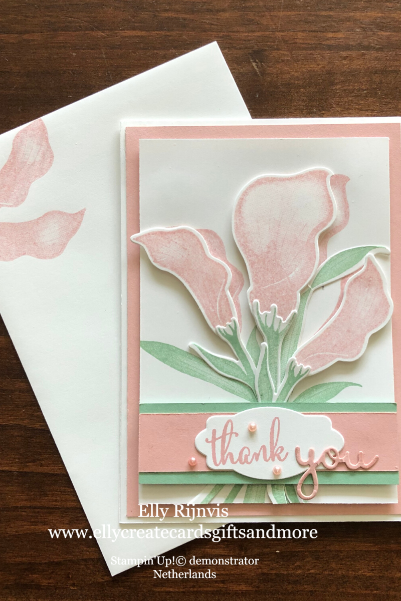 Stampin'Up! Make a Card-Send a Card