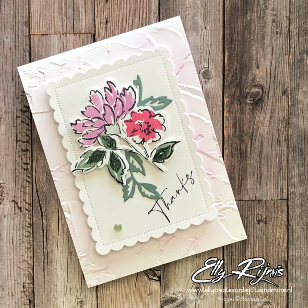 Stampin'Up! Color&Contour